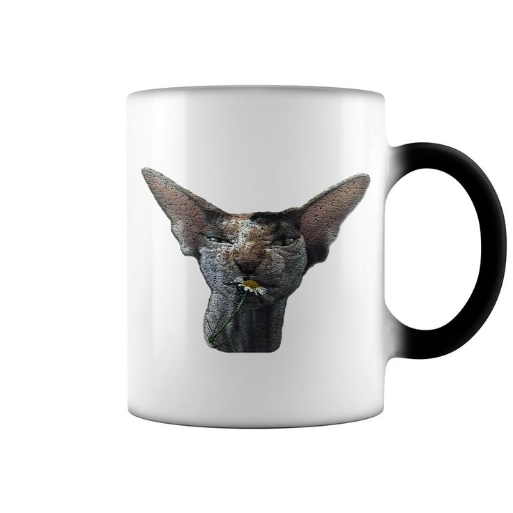 Hey, you love cats? You love sphynx? It is coffee mugs for You! Press the big green button - make the order right now!