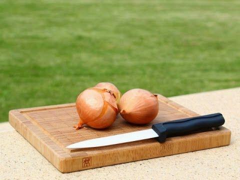 Ärgerst du dich über Essensreste? Egal ob Fleich, Fisch oder Gemüse - wegwerfen musst du sie nicht. Hier erfährst du wie du daraus leckere Fonds zauberst!