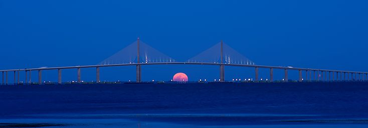 17 best images about sunshine skyway bridge on pinterest for Tides 4 fishing skyway