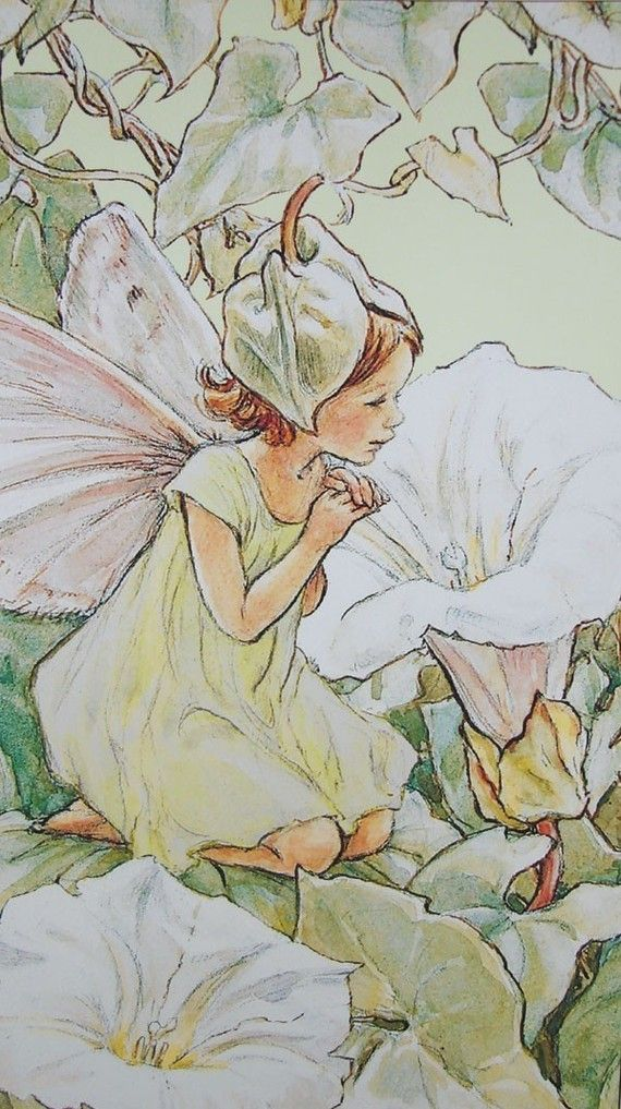 Flower Fairy Morning Apple Fairy - Cicely Mary Barker