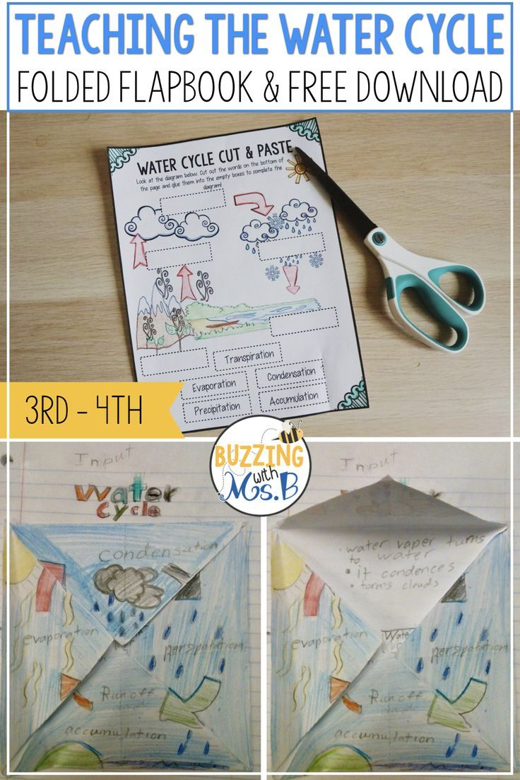 Water Cycle Activities Word Wall Words Worksheets And More Water Cycle Water Cycle Activities Water Cycle Craft
