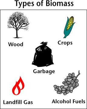 Image with different kinds of biomass types: wood, crops, garbage, landfill gas, and alcohol fuels