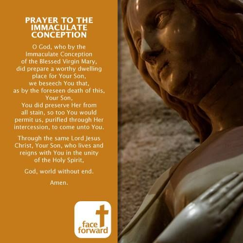 Immaculate Conception Mother Mary Prayer Face