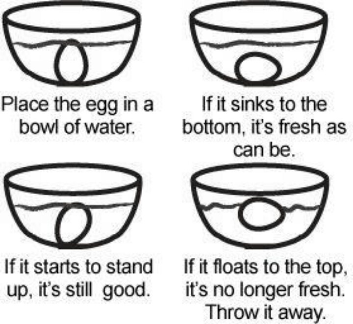 How to check if an egg is fresh.... | Good to know stuff ...