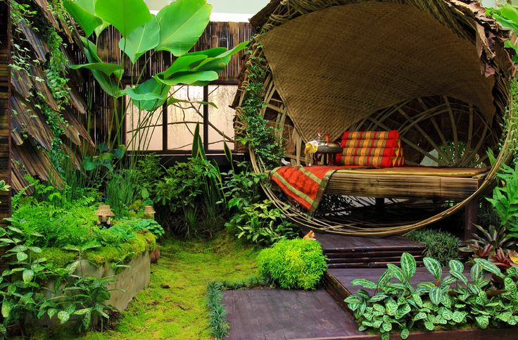 La pioggia gocciola dalle foglie verdi e viola della foresta thailandese.  The rain drips from green and purple leafs of the Thai forest.