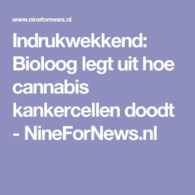 Indrukwekkend: Bioloog legt uit hoe cannabis kankercellen doodt - NineForNews.nl