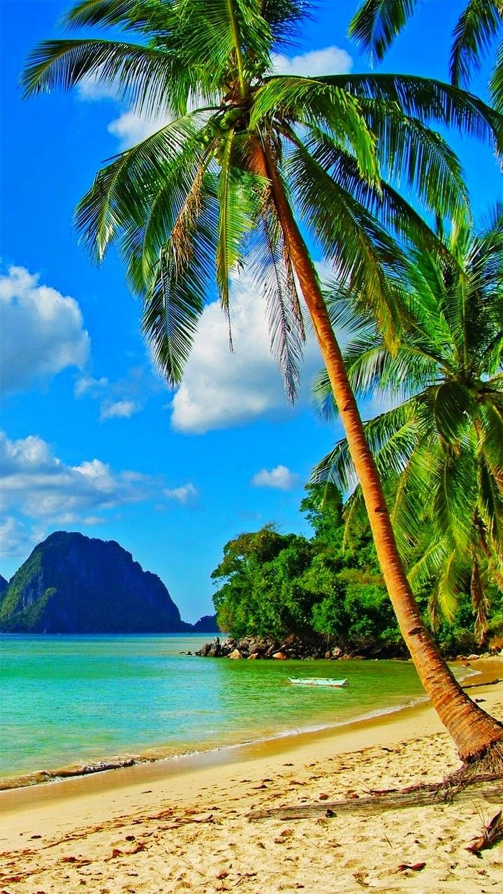Green Tropical Ocean Summer Vibes Beautiful Nature Beautiful Landscapes Nature Pictures