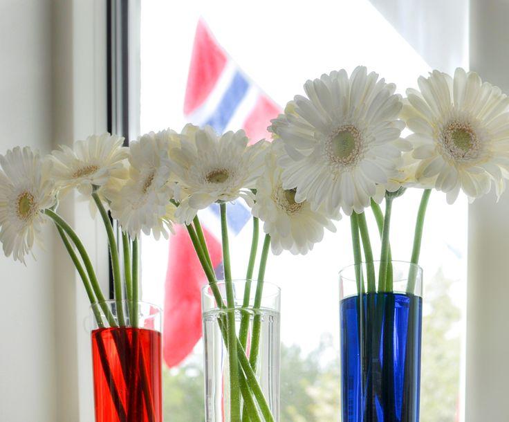 17. mai-blomster kan settes opp på så mange måter, og jeg har laget et par varianter. Begge versjonene har fargene rødt, hvit og blått,men fargene dukker opp litt ulike steder… Som her hvor jeg har fargesatt vannet. Og som vaser har jeg brukt enkle kjøkkenglass, for jeg synes det er fint med like «vaser». Jeg...Continue