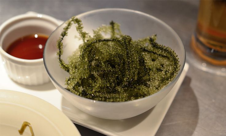 Tama — Try the sea grapes