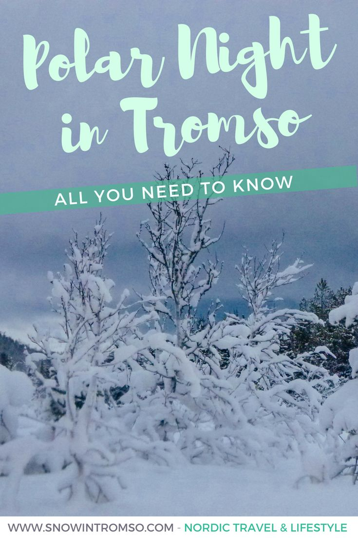 Visiting Tromsø during Polar Night? Here's everything you need to know!