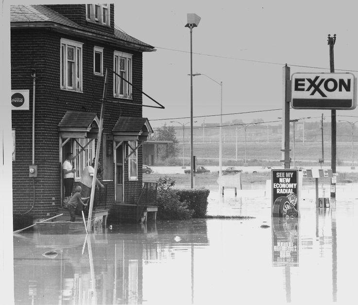 The Rosebud 1975 Eloise Flood.
