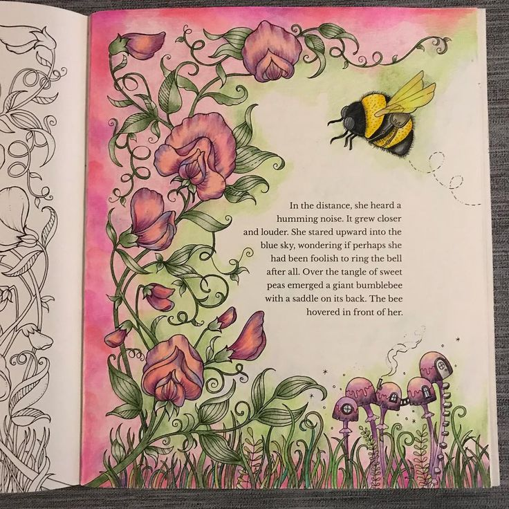"170 Likes, 11 Comments - Christine Hähnel (@chhaehnel) on Instagram: ""Finished this pic from Johanna Basford's Ivy and the Inky Butterfly today with Prismacolor pencils.…"""