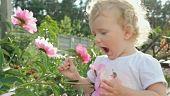 Little girl is sniffing a flower. http://www.gettyimages.com/license/693627416 #girls #flowers #baby #child #children #people #ukraine #beautiful #gettyimages #getty #garden #gardening #video #footage