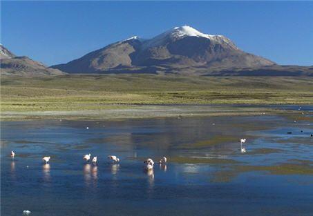 *** PARQUE NACIONAL VOLCÁN ISLUGA <<< Excelente !! | CHILE | reportajes | Parque Nacional Volcán Isluga