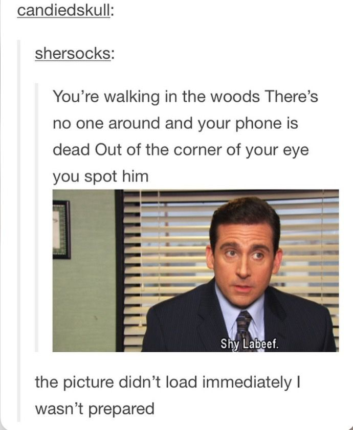 The Office Shia Labeouf Shy Labeef Tumblr Smiles