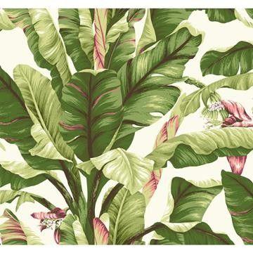 Banana Leaf tapeter från York® (YO155-01) hos Engelska Tapetmagasinet. Köp fraktfritt online eller besök butiken i Göteborg.
