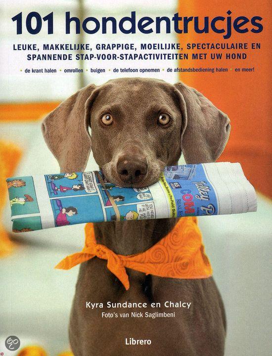 101 HONDENTRUCJES - Kyra Sundance - ISBN 9789089980960. Leuke, makkelijke, grappige, moeilijke, spectaculaire en spannende stap-voor-stapactiviteiten met uw hond. GRATIS VERZENDING - BESTELLEN BIJ TOPBOOKS VIA BOL COM OF VERDER LEZEN? DUBBELKLIK OP BOVENSTAANDE FOTO!