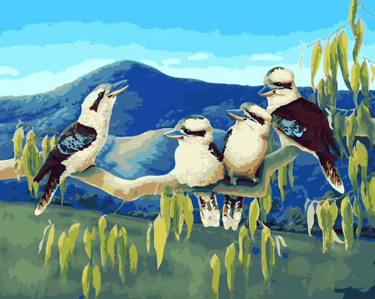 Acrylic Paint By Numbers Kit Canvas 50*40cm A022 Kookaburra Family
