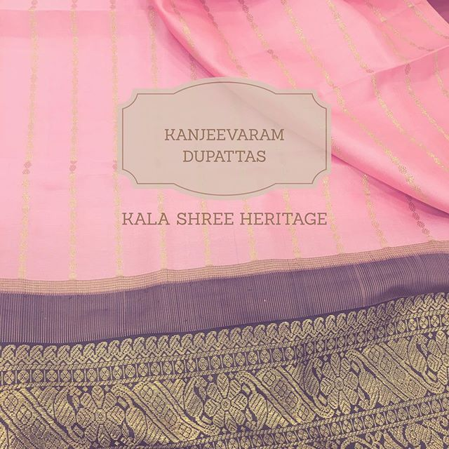 Heritage love ❤️️ blush pink kanjeevaram silk dupatta in a gold weave with charcoal black border 😍 classic and chic !! #kalashreeheritage #kalashreeheritage #love #designer #indianfashion #silk #dupatta #indianwedding #weave #indianbride #fashion #couture #designer #kanjeevaram #gold #classic #vintage #traditional #heritage #weddings #india #makeinindia
