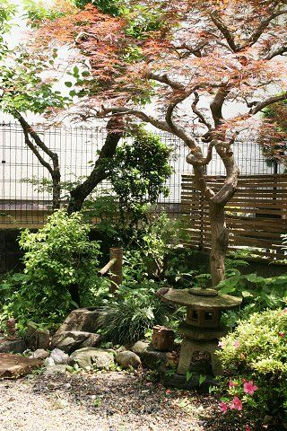Best 25+ Small Japanese Garden Ideas On Pinterest | Japanese Garden Style, Japanese  Garden Design And Japanese Garden Backyard
