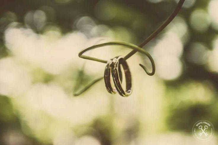 Wedding rings // F + M // Casa dei gelsi