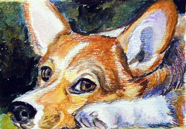 Pembroke Welsh Corgi ACEO Original Watercolor Miniature Painting Puppy Eyes! LyN