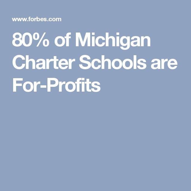 80% of Michigan Charter Schools are For-Profits