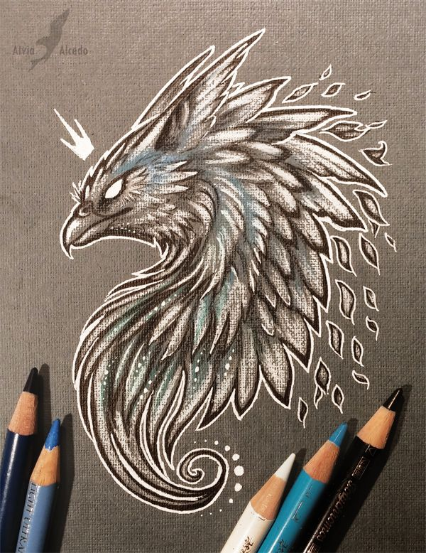 The power of wisdom and magic Pencils, pens on a grey textured paper. I decided to draw something less colored, different from my usual artworks. Serious griffin :< Art © me FACEBOOK...