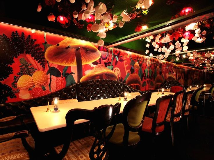 Alice in a Labyrinth, Chuo - Restaurant Reviews, Phone Number & Photos - TripAdvisor: