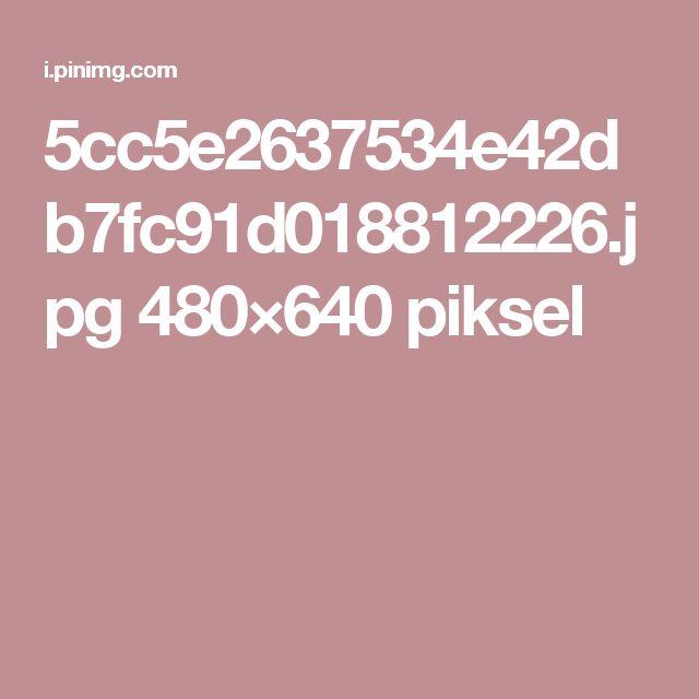 5cc5e2637534e42db7fc91d018812226.jpg 480×640 piksel