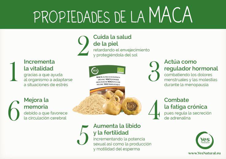 Propiedades y beneficios de la #maca #superalimento #macaandina #macaenpolvo