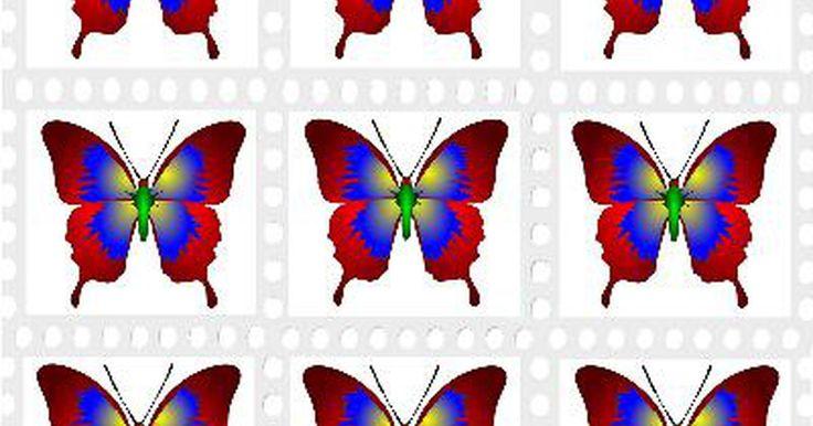 Como fazer borboletas de arame e nylon. As borboletas são um objeto decorativo usado em muitos projetos. As borboletas delicadas feitas com arame e nylon ficam bem em arranjos florais, enfeites para casamentos e trabalhos de bricolage. Você pode fazer várias borboletas de uma só vez usando este projeto sem costuras. Será possível controlar o tamanho das borboletas moldando o arame ...