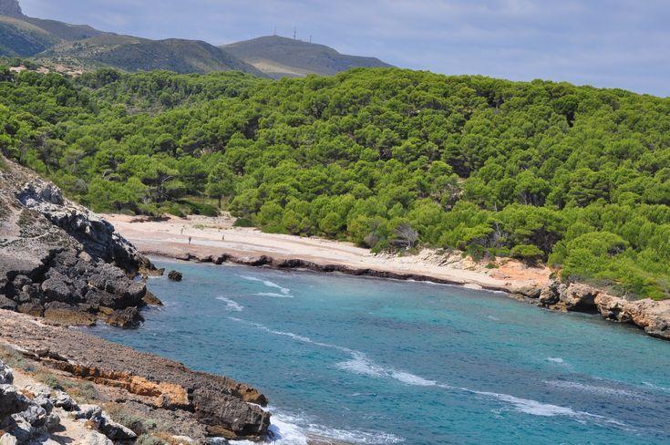 Mallorca mit Kindern1 frau mutter blog