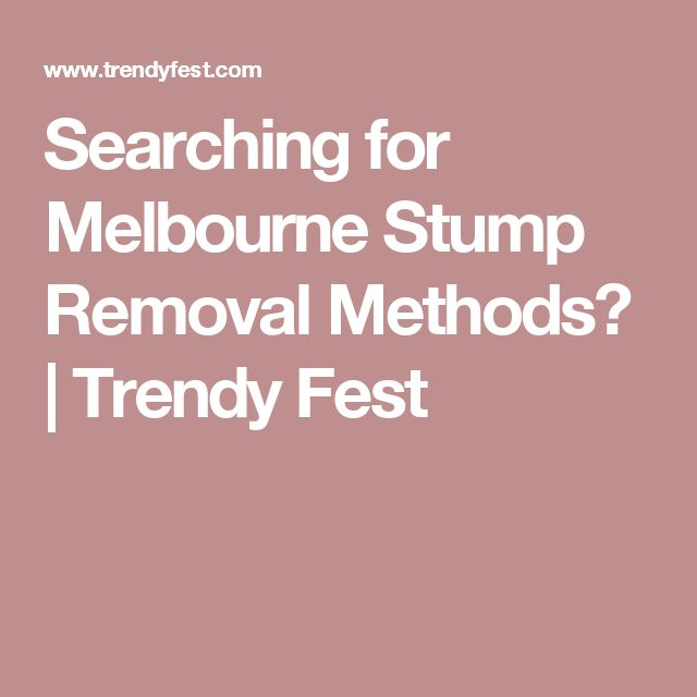 Searching for Melbourne Stump Removal Methods? | Trendy Fest