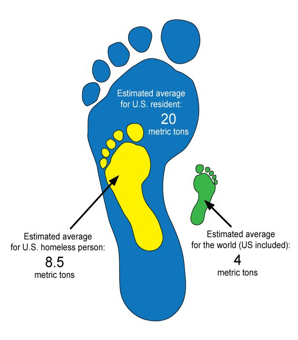 U.S. Carbon Dioxide Emissions Down 11 Percent Since 2007