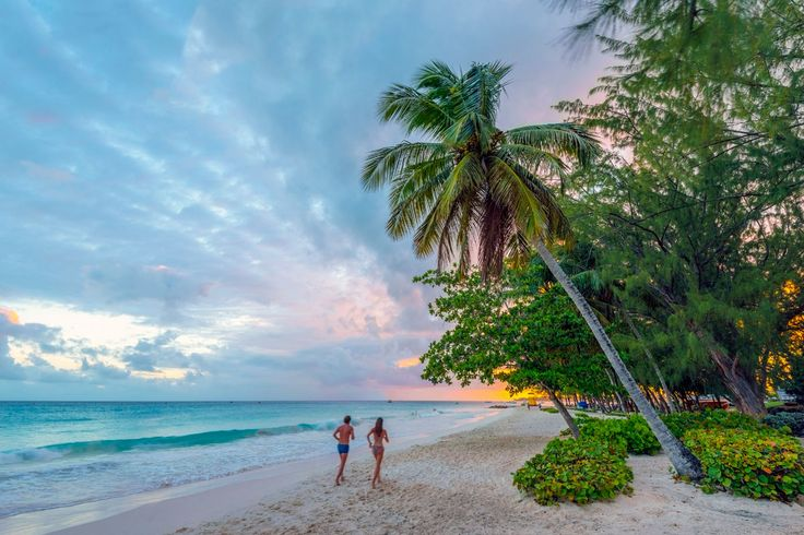 50 Best Beautiful Barbados Images On Pinterest: Best 25+ Barbados Beaches Ideas On Pinterest