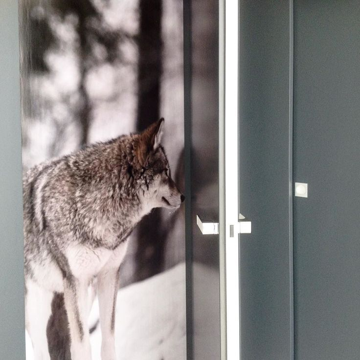 Retail detail - doors #2kulproject #retaildesign #decor #detail #project #nature #design #interiordesign #wallpaper #woolf #instafollow #instalike #gray