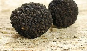 Buy Truffle Online is an Australian based retailer that are serving the region from numerous years.To know more about our items, sign onto our site now.