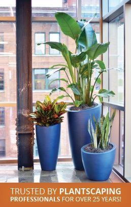 Plant Containers Commercial Planters Flower Pots Whole
