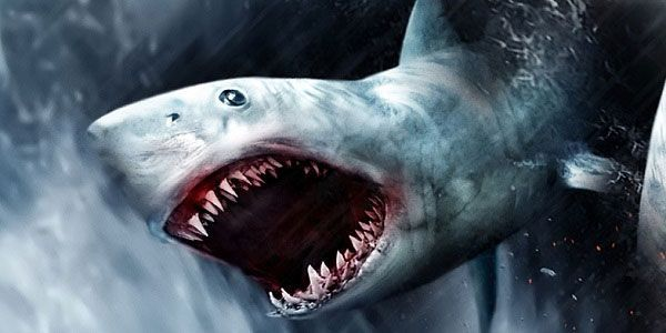 'Sharknado 3′: Fans Freak Out Over New Sequel That's 'So Bad It's Good'