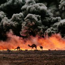Al Ahmadi, Kuwait, 1991  #Exhibition #SteveMcCurry #Brussels #Travel #Photography #Photographer