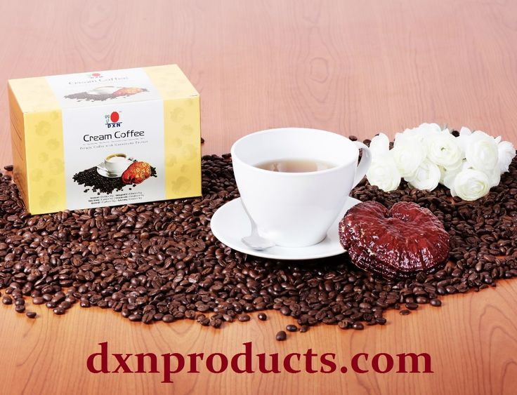 Creamy dream coffee with Ganoderma medicinal mushroom