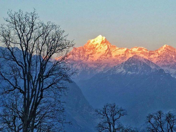View of Mount Dronagiri from Chitrakantha campsite (Kuari Pass)
