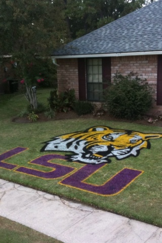 Eye of the Tiger stencils @ TigerDroppings.com