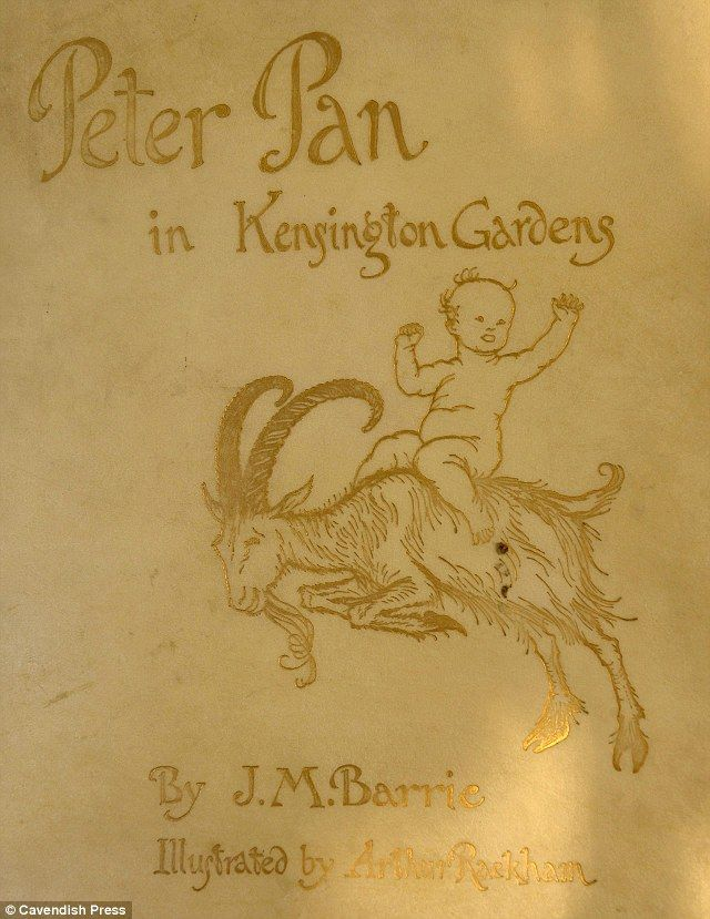 Rare 1906 limited first edition Peter Pan novel donated to charity shop shows the evergreen hero as never seen before  The second novel written about Peter Pan by JM Barrie - is signed and illustrated by renowed artist Arthur Rackham  The book will now go under the hammer after experts valued it at around £800