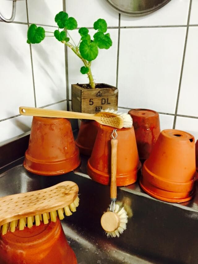Lerkrukor på tork. Rengör dina krukor med VästerbottensSåpa en helt naturlig återbrukad produkt som tar död på ohyra men är snäll mot miljön. Beställ #VästerbottensSåpa här: http://vasterbottenssapa.se/produkt-kategori/sapa/  #RentHus #Tradition #Återbruk #Vilhelmina #Siksjönäs #Såperiet #Blogg #Städa #Tvätta #Såpa #Tradition #Återbruk #Industri #LivetPåLandet #Västerbotten #Sweden #Vilhelmina #Inredning #lantligt #LivetPåLandet #IrisHantverk