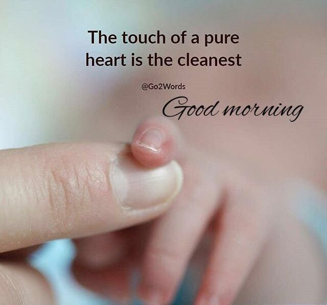 Good Morning The Touch Of A Pure Heart Is The Cleanest Good