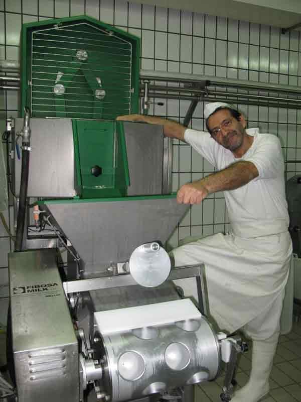 mozzarella cheese making process pdf