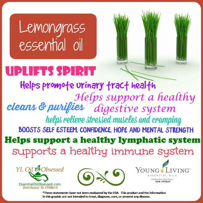 young living Lemongrass Essential Oil | EssentialOilObsessed.com