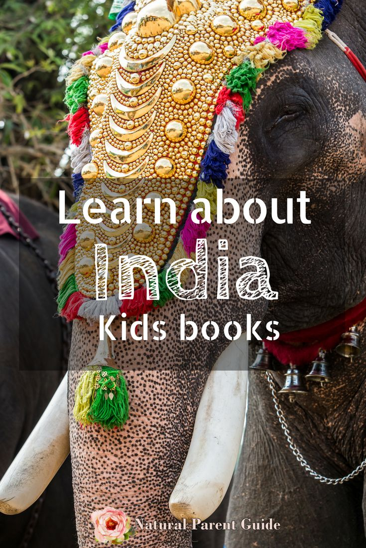 Learning about India | books for kids | books about India | picture books | home…